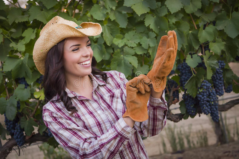 Young Adult Female Wearing Cowboy Hat and Gloves in Vineyard royalty free stock image