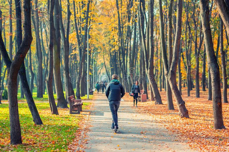 Young adult person riding modern electric scooter along beautiful colorful autumn city park. Man driving gadget vehicle through. Multicolored fall tree valley royalty free stock images