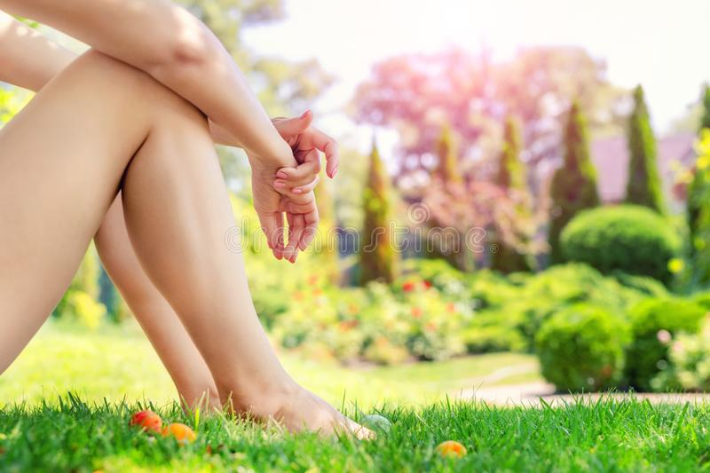 Young adult slim sexy woman sitting on green grass in park. Close-up girls barefoot legs and hands on lawn meadow in fruit garden stock photo