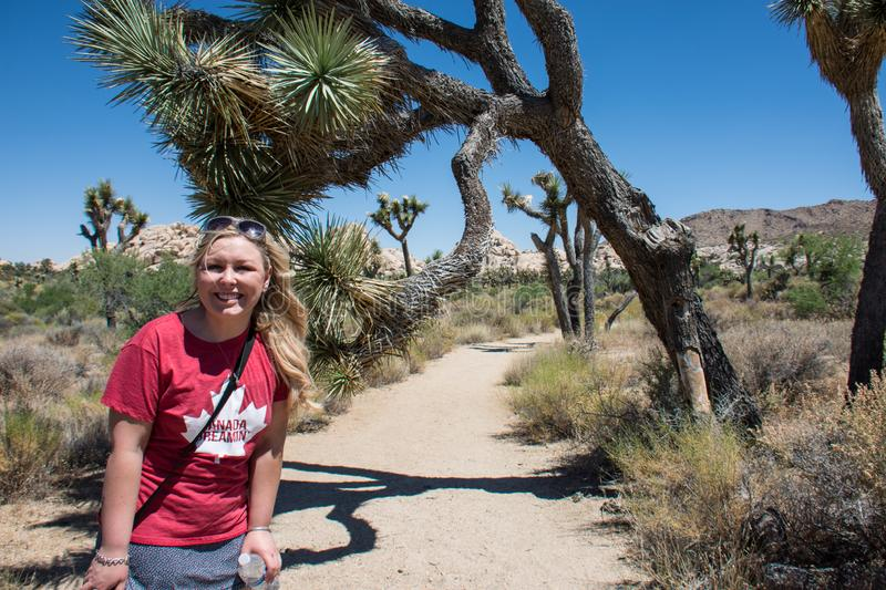 Young adult woman begins a hike in the large trees of Joshua Tree National Park. On a trail on a sunny summer day. Wall Street Mill hiking trail royalty free stock images
