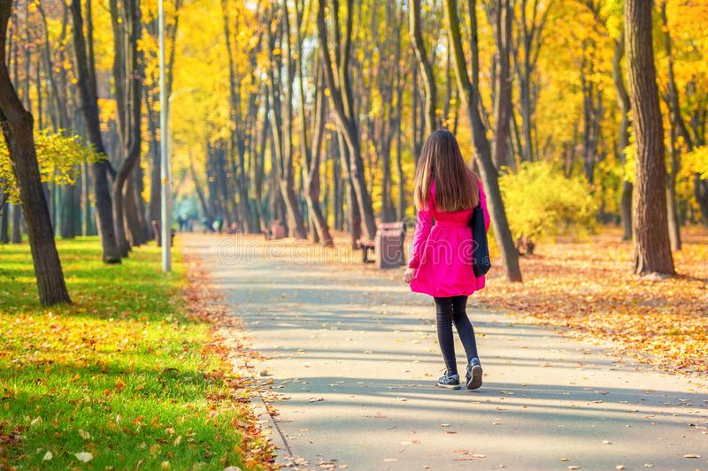Young adult woman in bright casual coat walking along beautiful golden colored autumn park alley. Happy attractive sporty girl in royalty free stock images