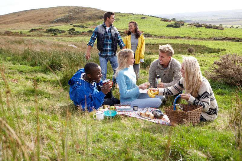 Young adults on country picnic. Having fun stock photo