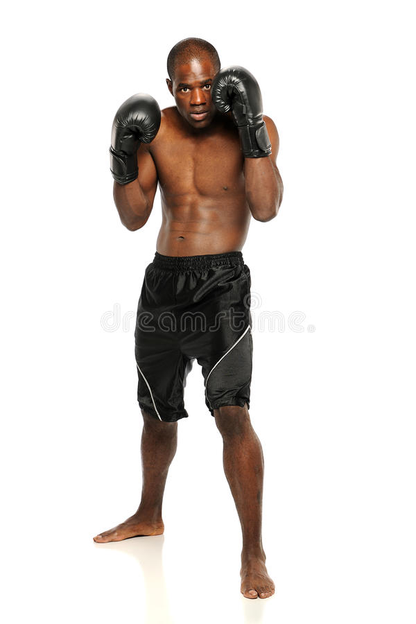 Download Young African American Boxer Stock Image - Image: 24951777
