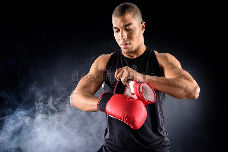 young african american boxer putting on gloves stock photos