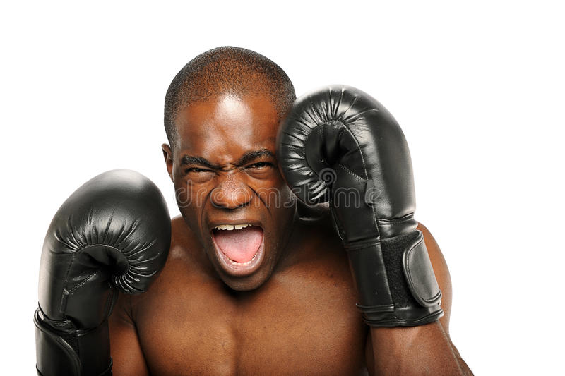 Young African American Boxer screaming royalty free stock image