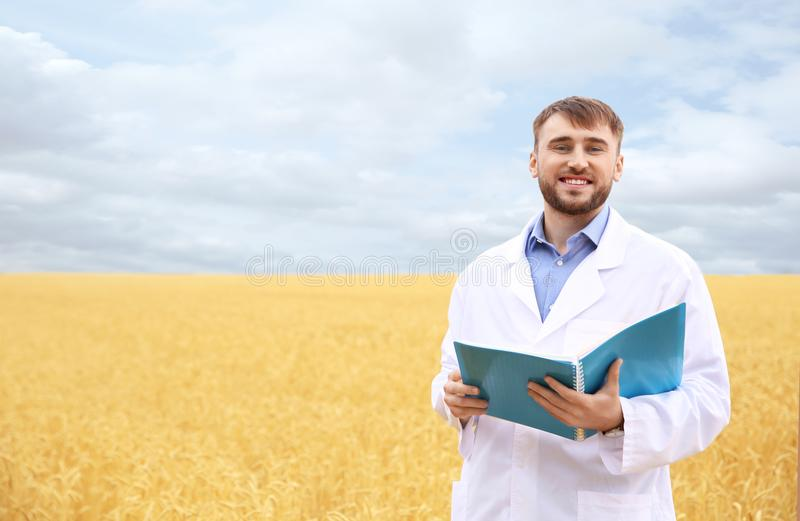 Young agronomist in grain field. Cereal farming stock photo
