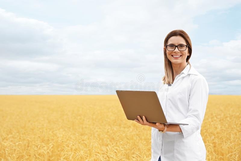 Young agronomist with laptop in grain field. Cereal farming royalty free stock images