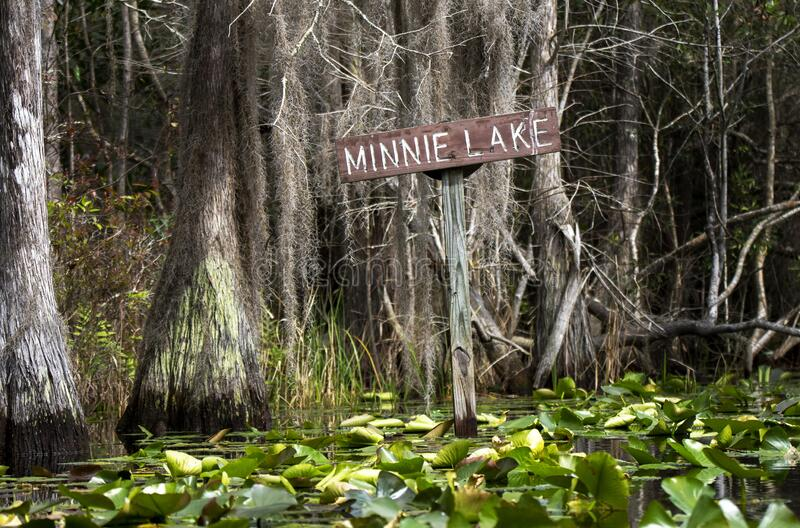 Minnie Lake canoe trail sign in the Okefenokee Swamp, Georgia. Okefenokee kayak canoe trail sign for Minnie`s Lake. Cypress trees, Spanish Moss, lily pads royalty free stock photos