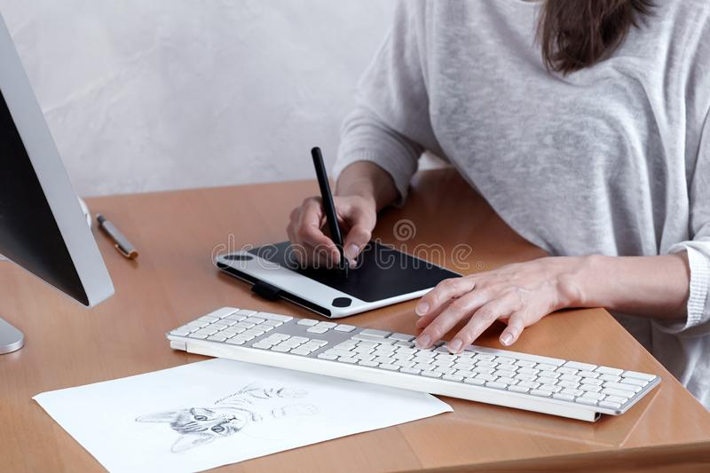 Young artist or graphic designer draws kitten on graphic tablet at the home office. Woman freelance. royalty free stock photography