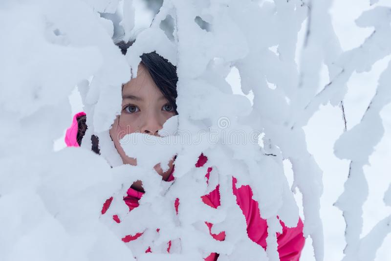 Young Asian girl standing behind snow covered branches stock photo