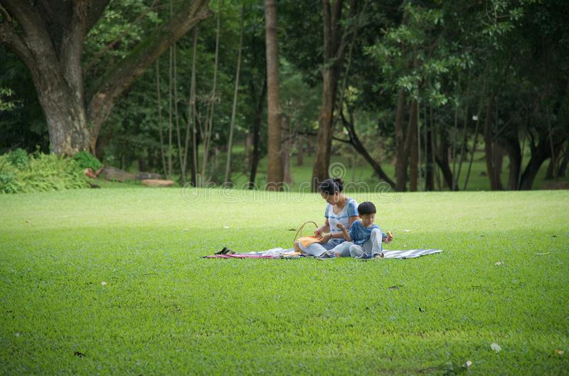 Young mother and son picnic in the park stock photo