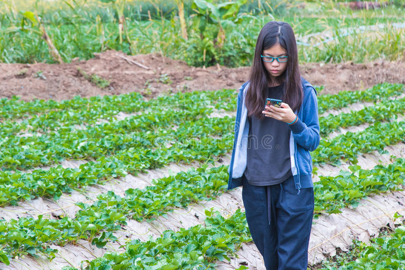 Young asian teenager using mobile phone technology in strawberry. Young asian teenager using mobile phone technology outdoor in strawberry field, showing no stock image