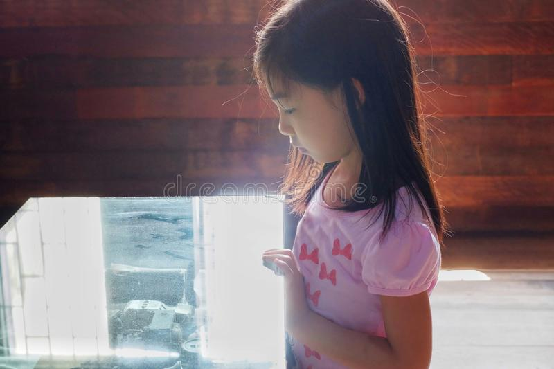 An Asian girl exploring an artifact in a glass case of a museum with back lit lighting from a window royalty free stock image