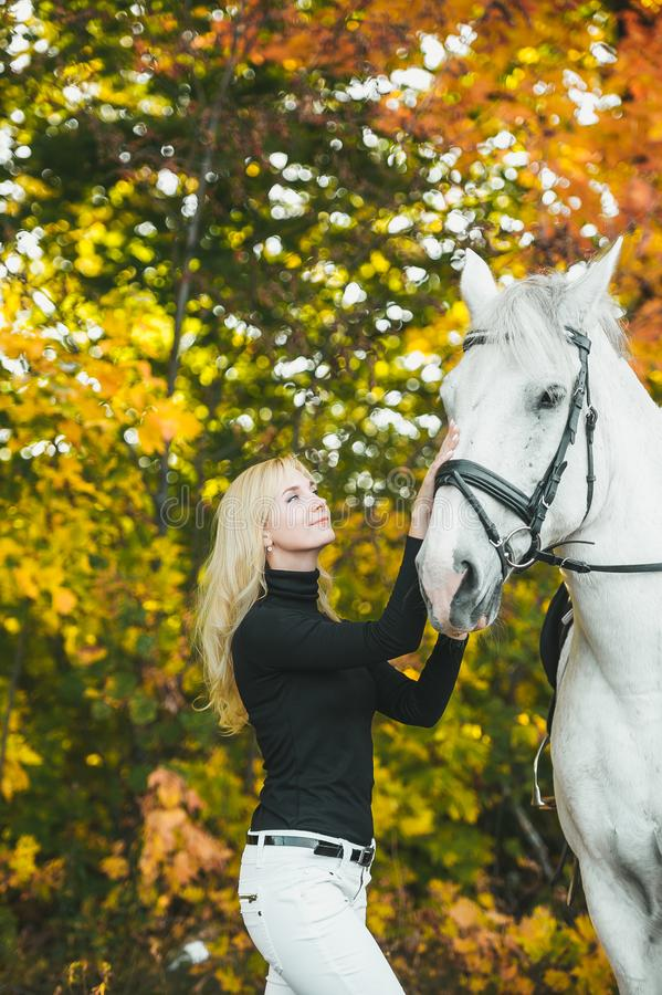 Young attractive blond woman touch a white horse in a autumn forest. Vertical portrait stock image
