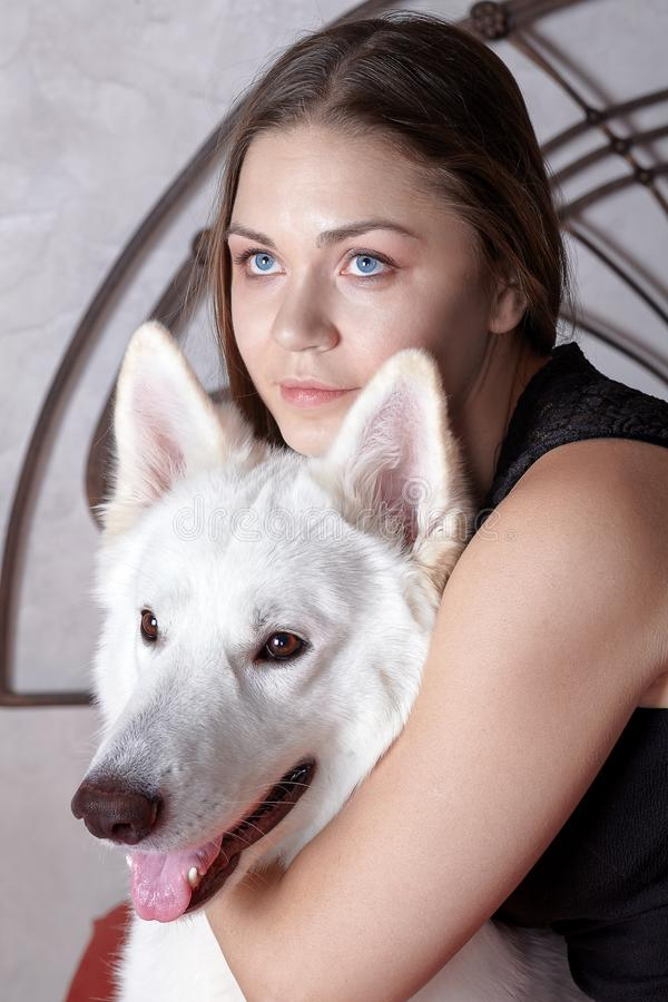 Young attractive caucasian woman embrases expressive dog of big swiss shepherd breed. Beautiful female and snowy white dog like Gh. Ost, smiling. Indoors, copy royalty free stock image