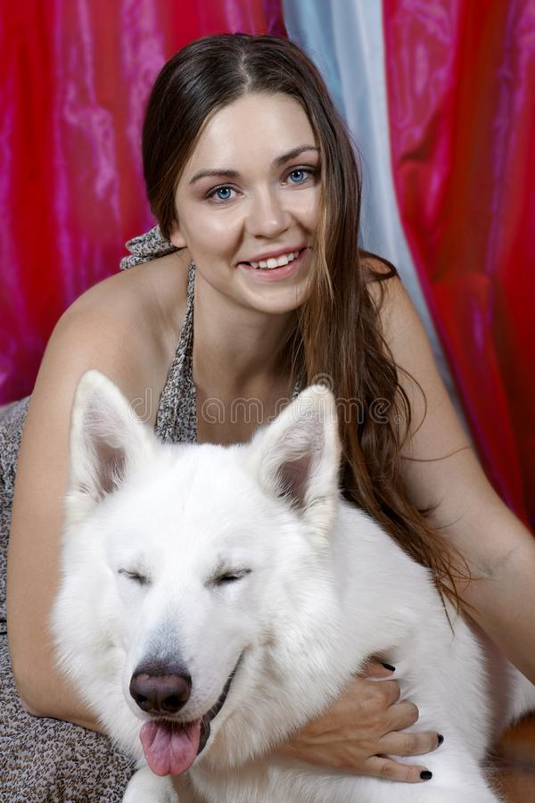 Young attractive caucasian woman embrases expressive dog of big swiss shepherd breed. Beautiful female and snowy white dog like Gh. Ost, both smiling. Indoors royalty free stock image