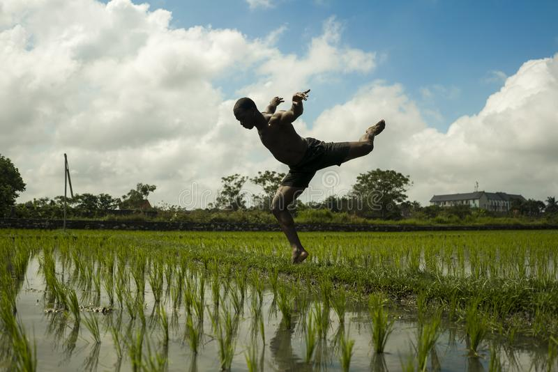 Young attractive contemporary ballet dancer and choreographer , a black African American man dancing and posing on tropical rice stock photo