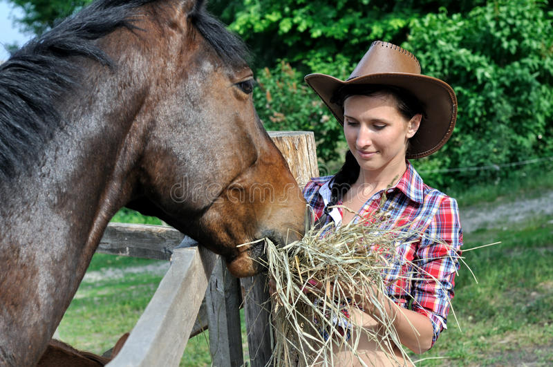 Young attractive cowgirl feeds horse in the farm. In summer day royalty free stock images
