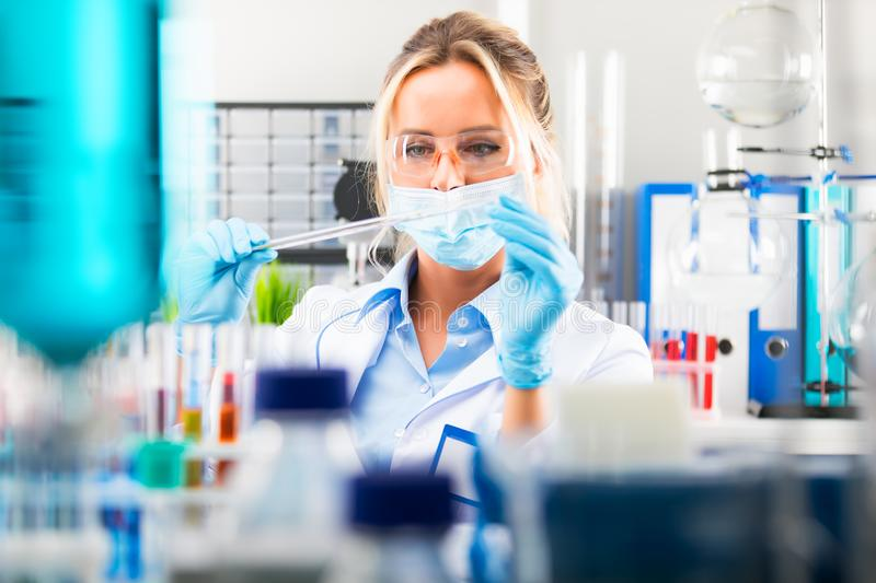 Young attractive female scientist preparing laboratory equipment royalty free stock photos