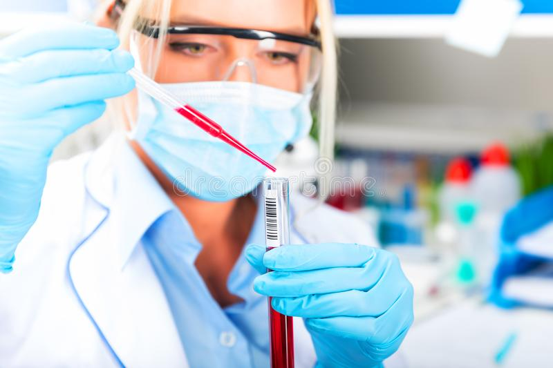Young attractive female scientist researching in the laboratory. Young attractive female scientist in protective glasses and gloves dropping a red liquid royalty free stock images