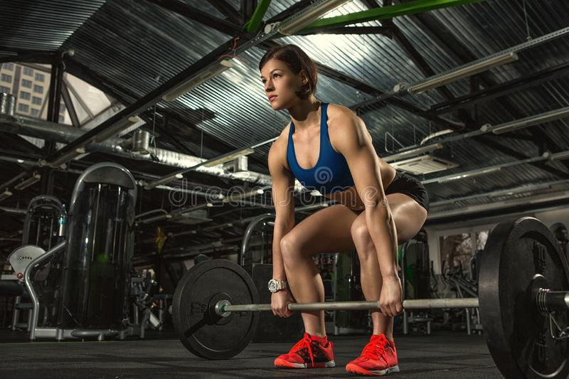 Young attractive fitness woman doing weight training at the gym royalty free stock photography