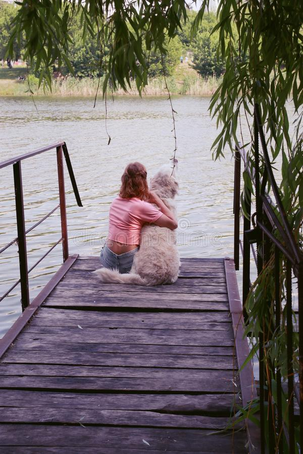 Young attractive girl with her pet dog at a beach stock photography