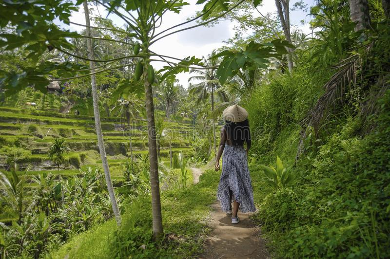 Young attractive happy afro american black woman 30s exploring r. Ice fields forest and jungle in Bali wearing rural traditional Asian hat hiking and exploring royalty free stock images