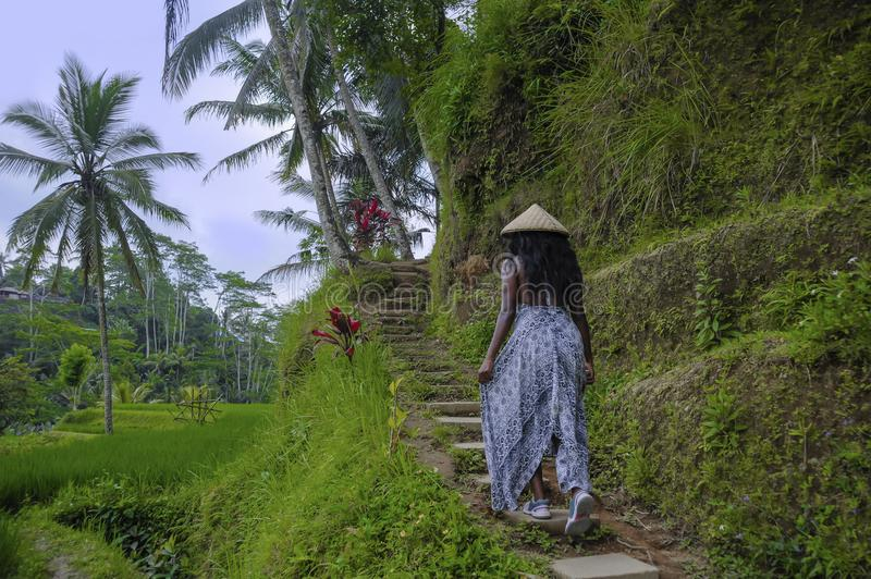 Young attractive happy afro american black woman 30s exploring rice fields forest and jungle in Bali wearing asian hat. Young attractive happy afro american stock photography