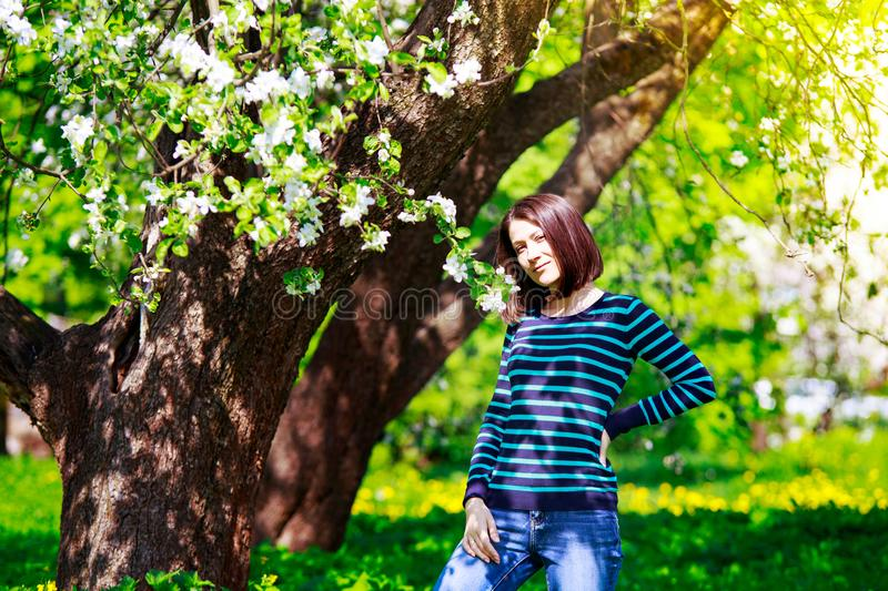 Young attractive woman in apple blooming garden. Sunny spring portrait stock image
