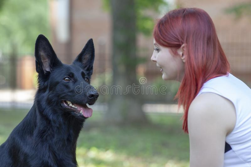 Young attractive woman with red hair and big black dog look to each other. Shepherd with clever impressive eyes. royalty free stock photography
