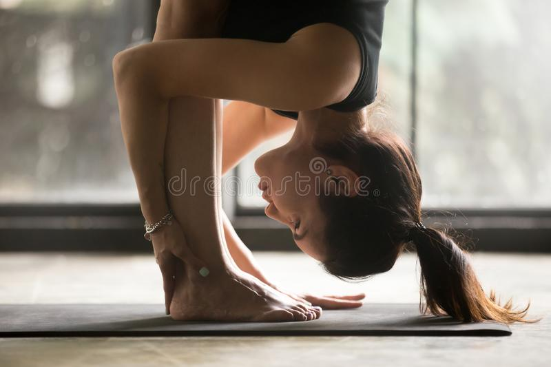 Young attractive woman in uttanasana pose, studio background stock images