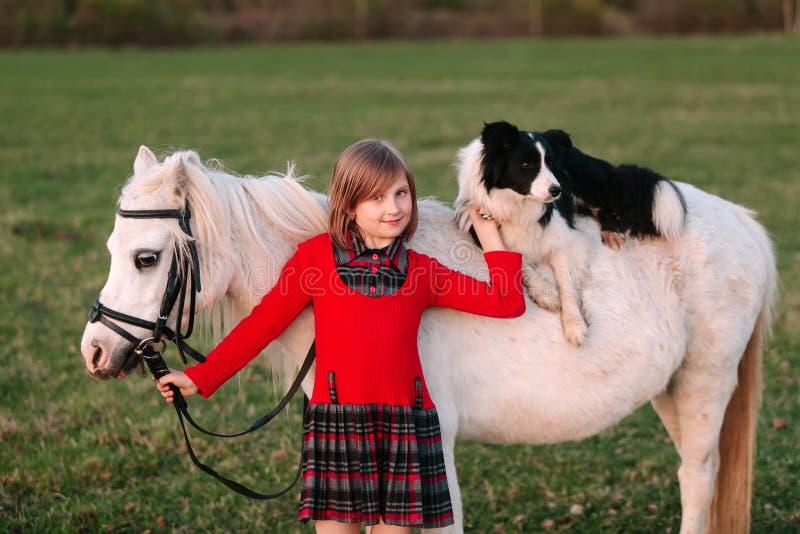 Young baby girl. Red dress. Dog on horseback. Little White Horse pony stock image