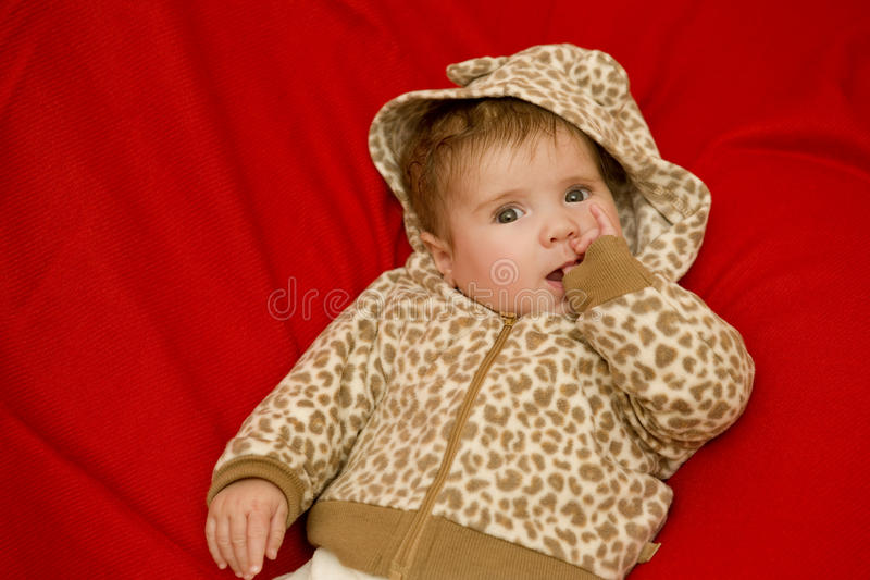Young baby portrait stock images
