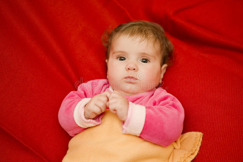 Young baby portrait royalty free stock photo