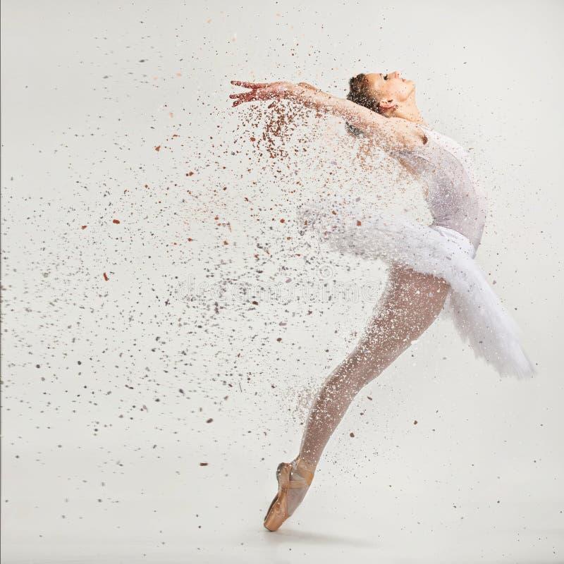 Young ballerina dancer stock photography