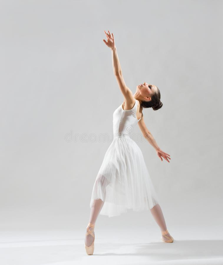 Ballerina on grey version royalty free stock images