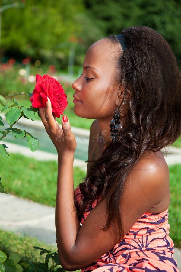 Young beautiful african american girl stock photos