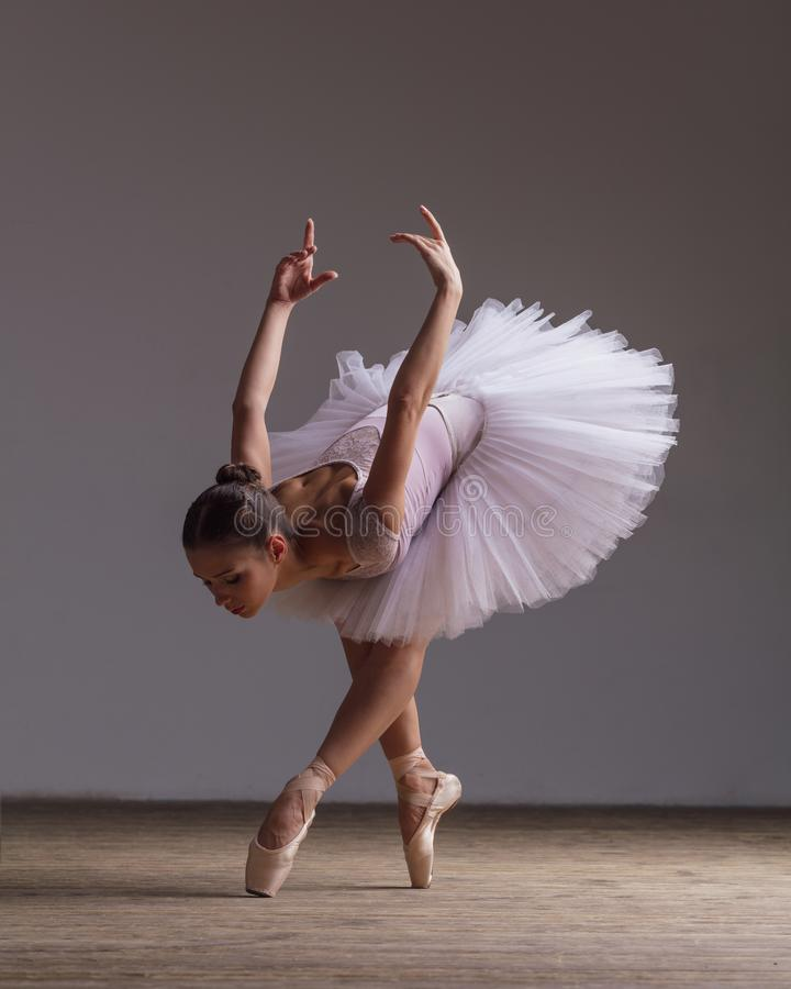 Young beautiful ballerina is posing in studio. Young beautiful ballet dancer is posing in studio royalty free stock image
