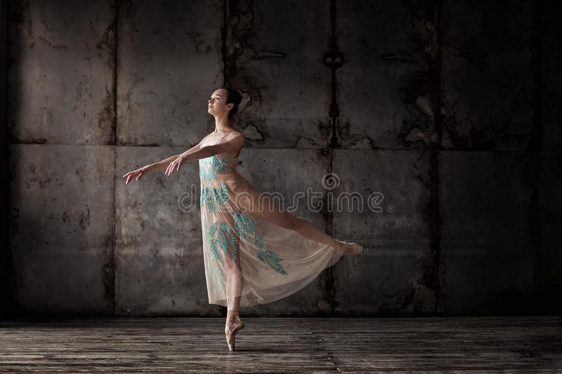 Young beautiful ballet dancer in beige dress. Posing on pointes over dark grunge background royalty free stock photo