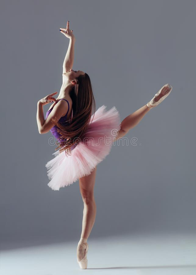 Young beautiful ballerina is posing in studio. Young beautiful ballet dancer is posing in studio royalty free stock photo