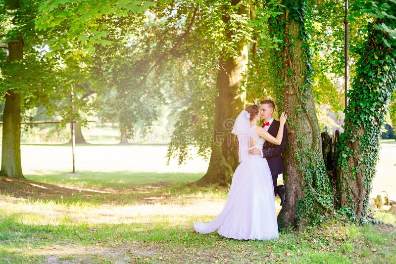 Young beautiful bride and groom kissing stock photos