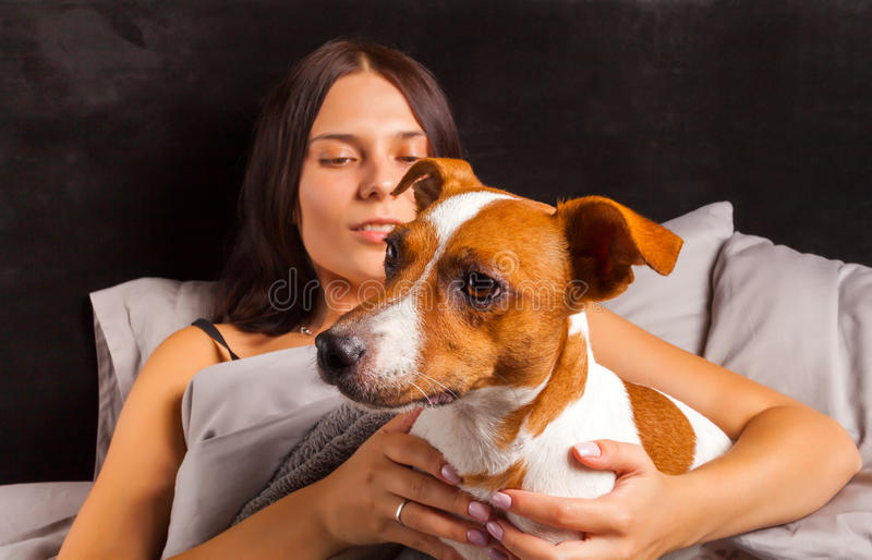 Young beautiful brunette woman plays in bed with her dog royalty free stock photos