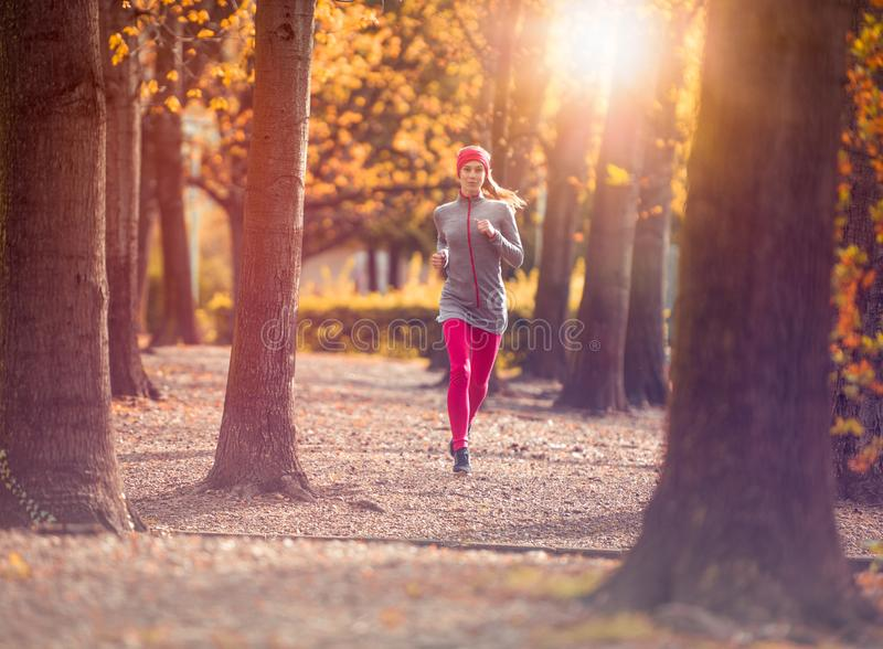 Young beautiful caucasian woman jogging workout training. Autumn running fitness girl in city urban park environment royalty free stock images