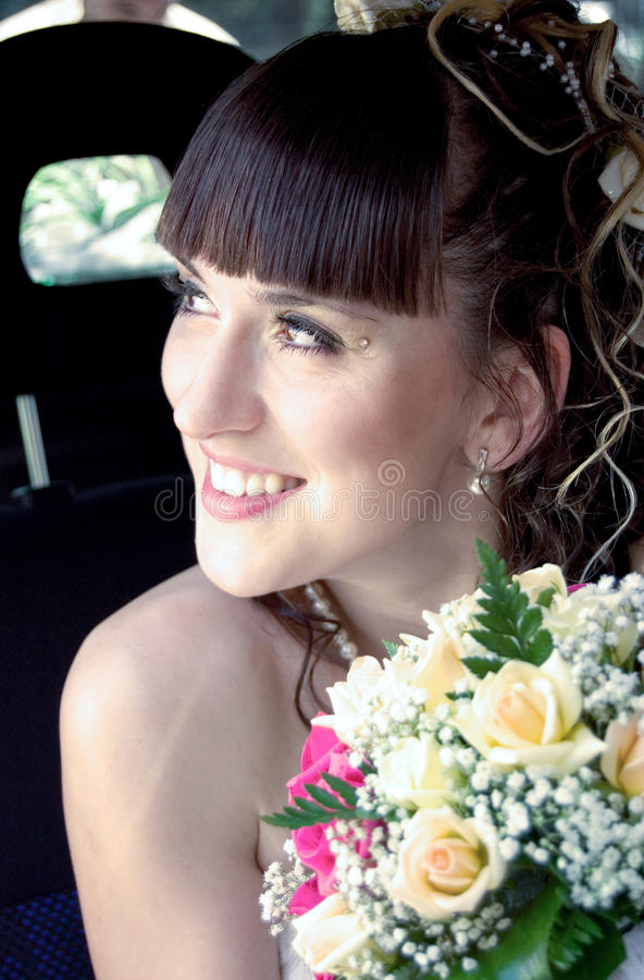 The Young Beautiful Fiancee Stock Image