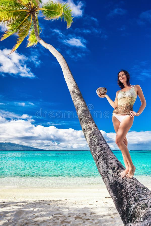 Young beautiful girl in bikini with coconut on the palm tree on royalty free stock photos