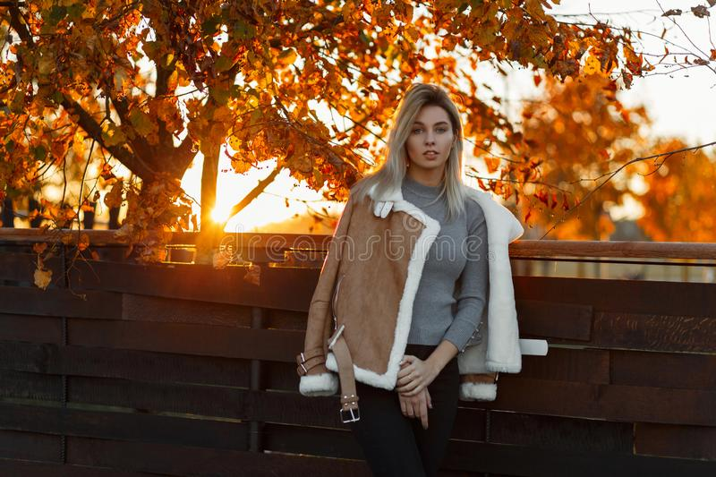 Young beautiful girl model in gray knitted fashionable sweater. And warm jacket posing in a park near a wooden fence against a background of golden trees and royalty free stock photo