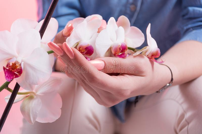 Woman with pink spring manicure on nails polish holds orchids flowers in hands stock photos