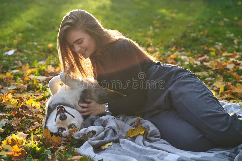 Young beautiful girl playing with her cute husky dog pet in autumn park covered with red and yellow fallen leaves. Young beautiful girl playing with her cute stock images