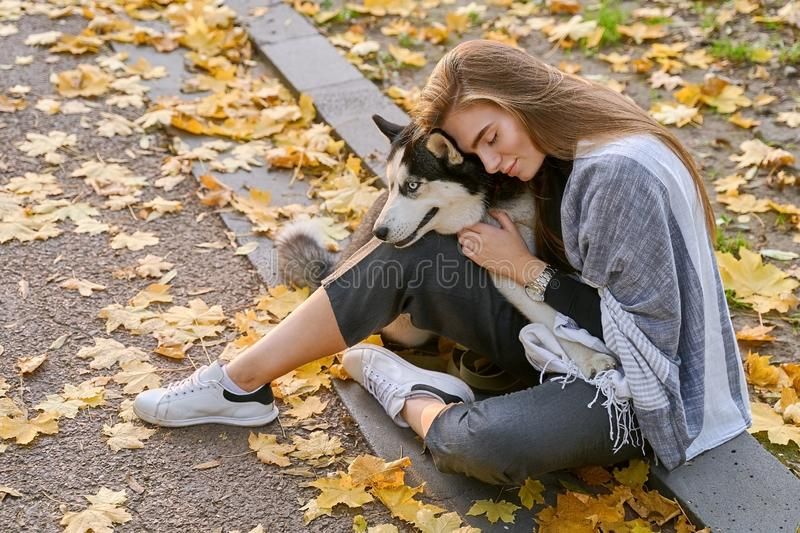 Young beautiful girl playing with her cute husky dog pet in autumn park covered with red and yellow fallen leaves. Young beautiful girl playing with her cute royalty free stock photo