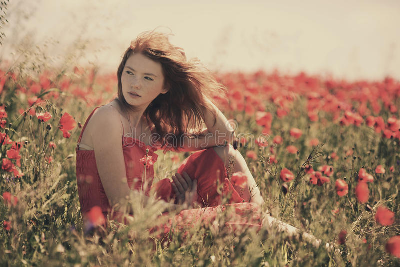 Young beautiful girl in poppy field royalty free stock images